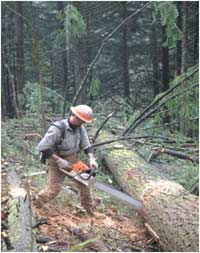 Association of Oregon Loggers: Logger with Power Saw