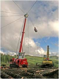 Association of Oregon Loggers: Logging High Wire Act