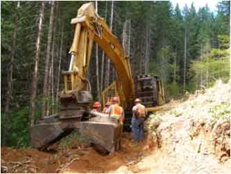 Association of Oregon Loggers: Heavy Equipment Clearing Path
