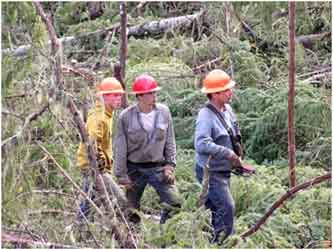 Association of Oregon Loggers: Three Loggers Examining Area