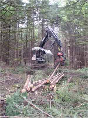 Association of Oregon Loggers: Heavy Equipment Selective Logging Work