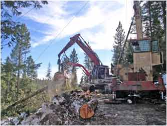 Association of Oregon Loggers: Two Pieces of Heavy Equipment Sorting Logs